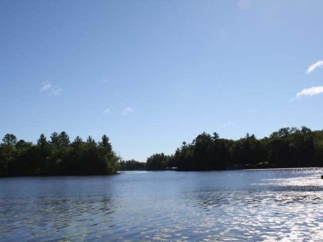 ON Dollar Lake Rd E, Eagle River, WI 54521
