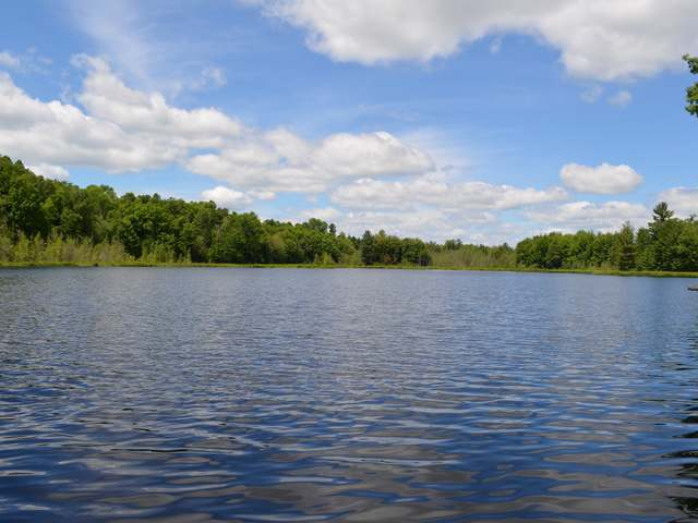 ON Horn Lake Rd, Irma, WI 54442