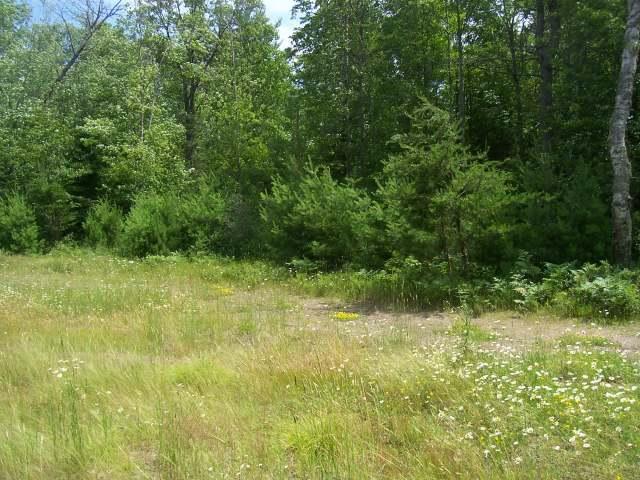 ON Red Pine Ln #Lot 9, Land O Lakes, WI 54540