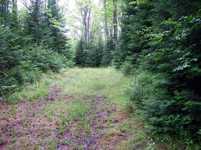 NEAR Stateline Lake Rd E #Lt 2, Presque Isle, MI 49968