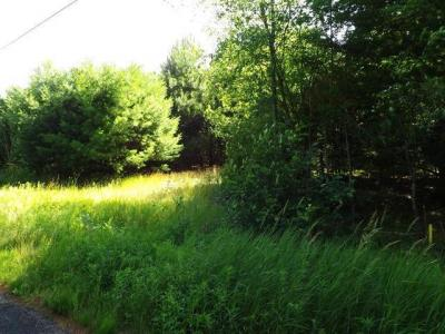 Photo of ON Minnesota St #Lot 3, Eagle River, WI 54521