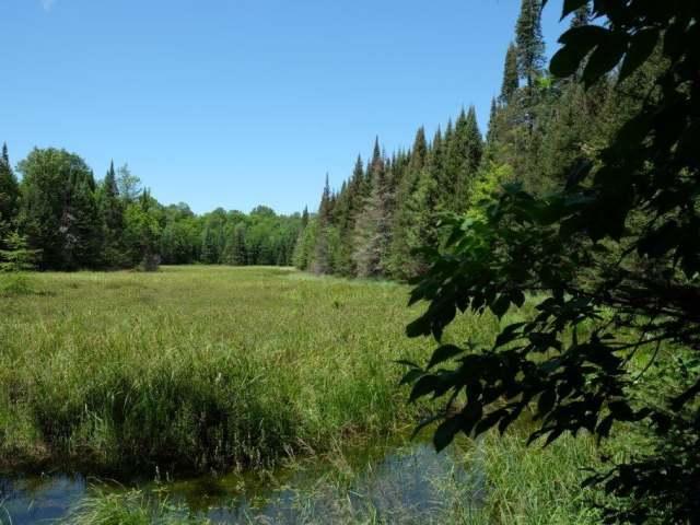 8529 Murphy Lake Rd, Presque Isle, WI 54557
