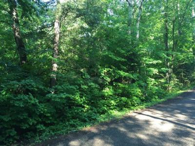 Photo of ON Moonshine Valley Rd, Presque Isle, WI 54557
