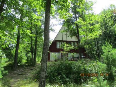 Photo of 9802 Bolger Lake Rd, Minocqua, WI 54548
