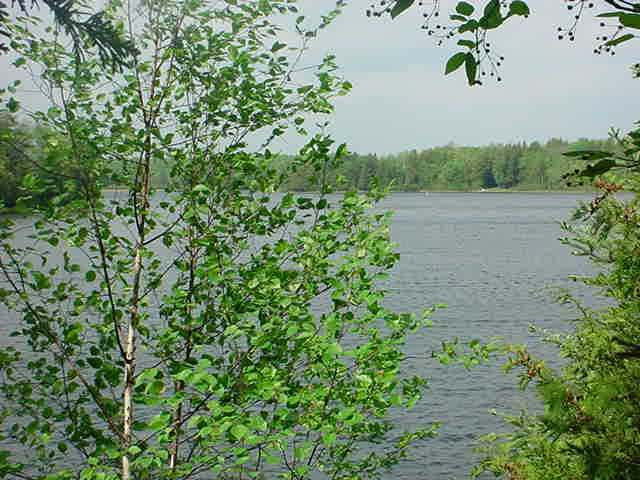 LOT 14 Stafford Point Rd, Mercer, WI 54547