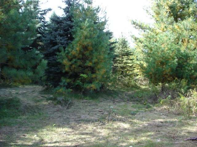 Lot 26 Whispering Woods On Pine, Pine River, WI 54452