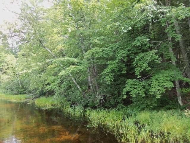 #5 Whispering Pines Dr, Mercer, WI 54547