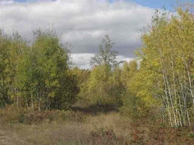 Lot 22 Bradley Ct, Mercer, WI 54547