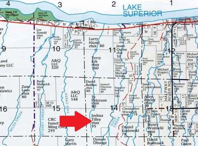 NEAR Bolo Rd, Carp Lake, MI 49953