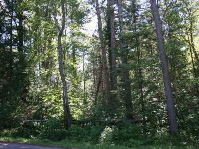 ON Pioneer Rd, Conover, WI 54519