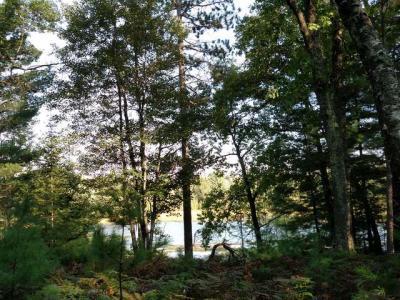 Photo of 6625 D & L Lake Ct, Lake Tomahawk, WI 54539