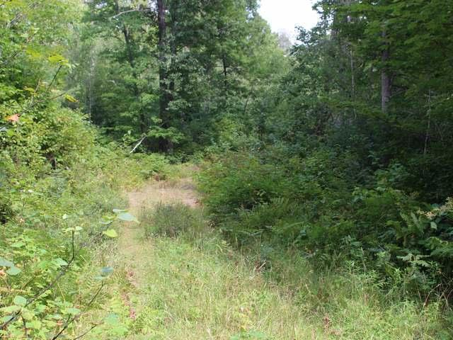 OFF Deep Lake Rd, Conover, WI 54519