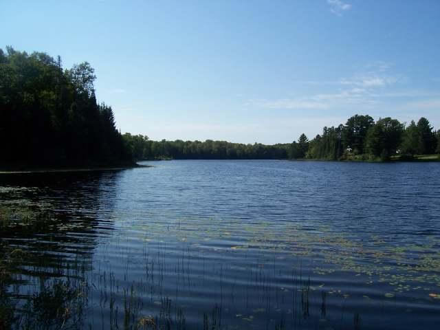ON Allen Lake Rd #Lot 1, Watersmeet, MI 49969