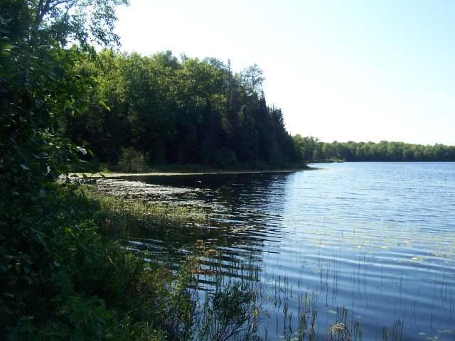 ON Allen Lake Rd #Lot 2, Watersmeet, MI 49969