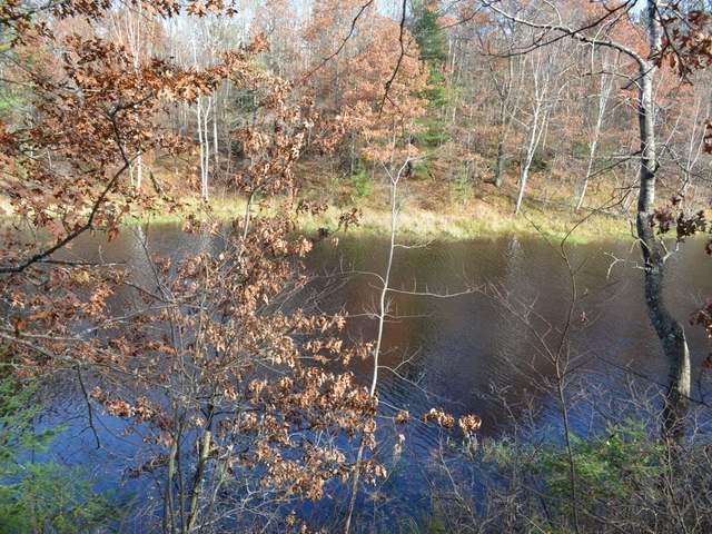Lot 16 Deer Trail Rd, Tomahawk, WI 54487