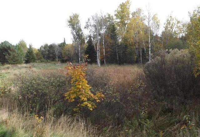 ON Garden View Ln #Lot 10, Phelps, WI 54554