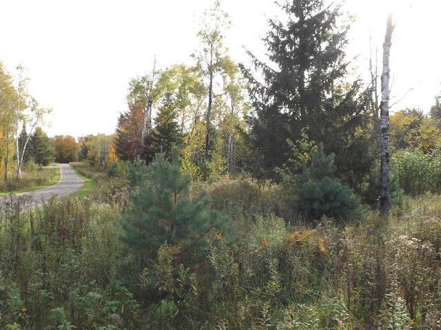 ON North Winds Ln #Lot 12, Phelps, WI 54554