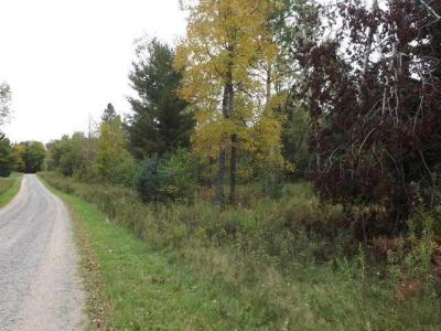 Photo of ON North Winds Ln #Lot 13, Phelps, WI 54554