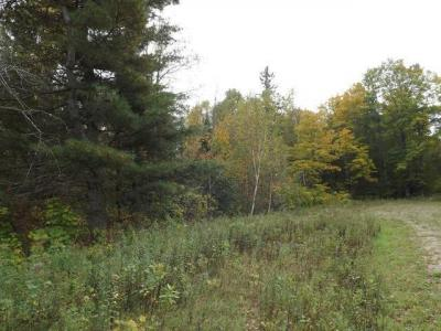 Photo of ON North Winds Ln #Lot 17, Phelps, WI 54554