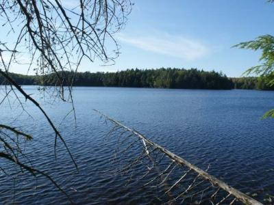 Photo of NEAR Gaylord Lake Rd, Presque Isle Marenisco, MI 49947