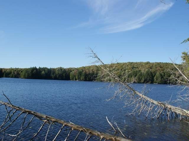 ON Gaylord Lake Rd, Presque Isle Marenisco, MI 49947