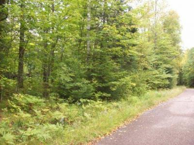 Photo of Lot 6 Hiawatha Lake Rd, Winchester, WI 54557