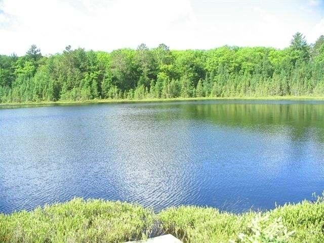 Lot 13 Clear Lake Rd #Burland Lk, Elcho, WI 54428