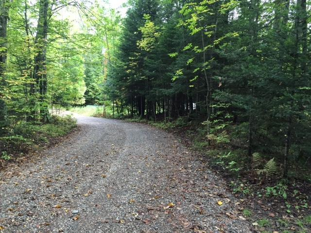ON Lakeview Ln #Lot39&40, Florance, WI 54542