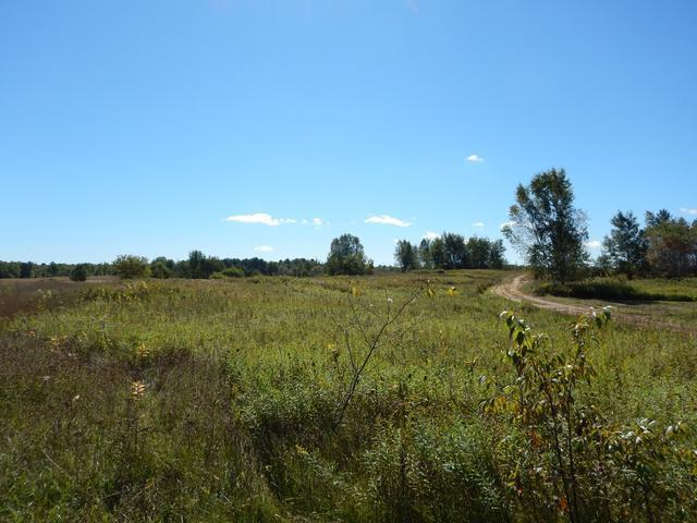 ON Erdman Rd #24.4 Acres, White Lake Wi, WI 54491