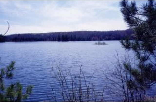 Lot 18 Indian Lake Rd, Land O Lakes, WI 54540