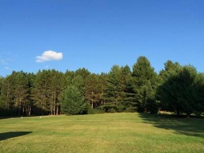 ON Dyers Ln #Lot #3, Eagle River, WI 54521