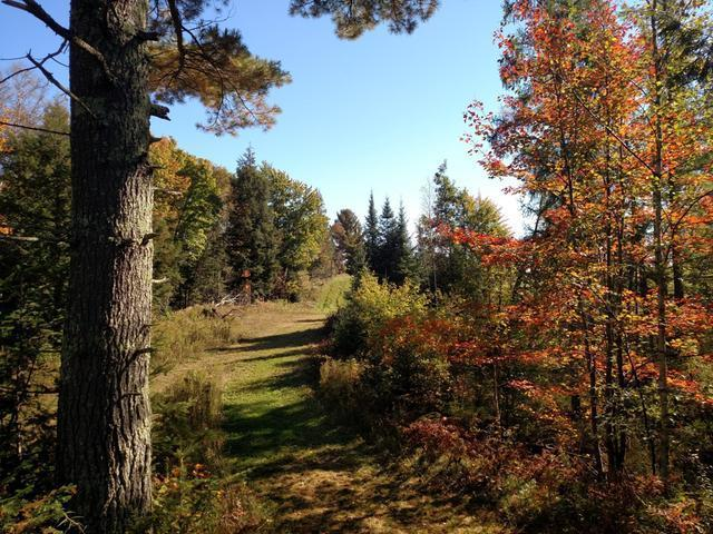 Lot 7 Katie Ln, Phillips, WI 54555