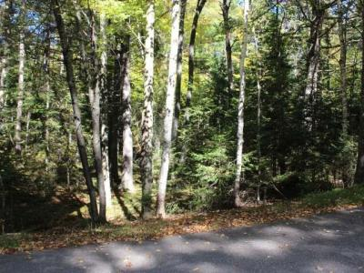 Photo of ON Chippewa Tr, St Germain, WI 54558