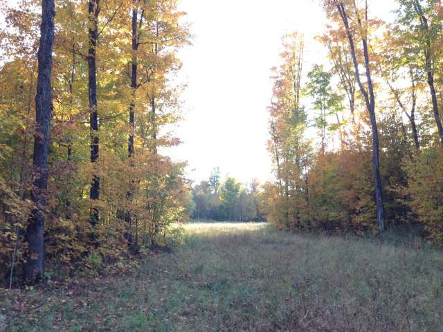 N11606 Forest Rd 508, Worcester, WI 54555