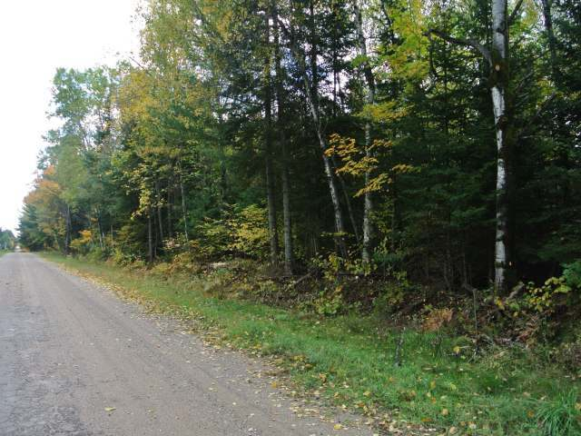ON Crystal Lake Rd, Three Lakes, WI 54562