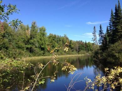 2990 Pelican Lake Rd N, Rhinelander, WI 54501
