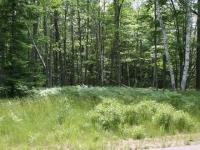 ON Buck Tr #Lot 38, Eagle River, WI 54521