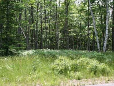 Photo of ON Buck Tr #Lot 38, Eagle River, WI 54521