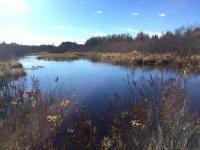 ON Tamarack Dr, Eagle River, WI 54521