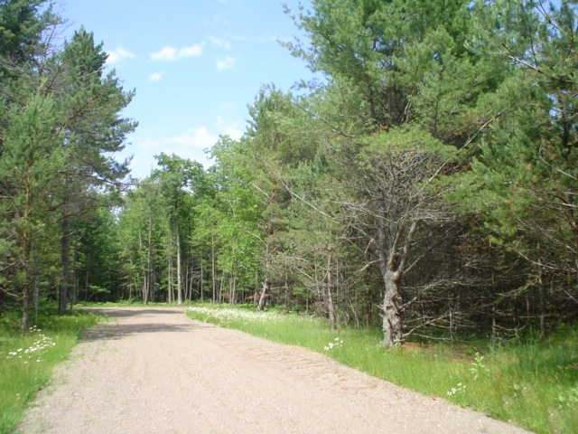 ON Bloom Rd #Lot #2, Eagle River, WI 54521