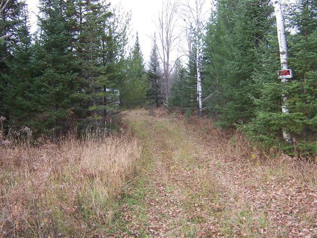 NEAR Hwy M28 #13.5 Acres, Trout Creek, MI 49967