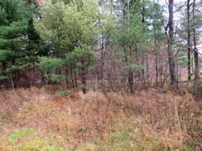 Photo of ON Town Line Rd, Boulder Junction, WI 54512