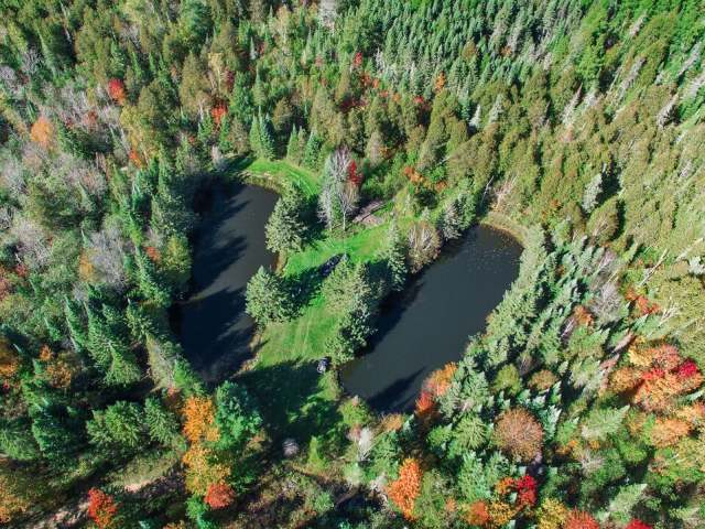 Off Cth S, Irma, WI 54442