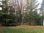 7334 Spruce Ln, Sugar Camp, WI 54521 photo 1