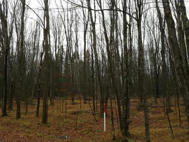 ON Red Fox Dr, Presque Isle, WI 54557