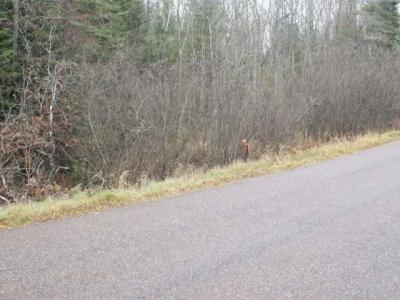 Photo of ON Airport Rd, Boulder Junction, WI 54512