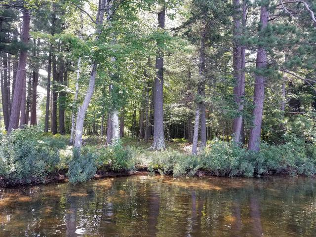 ON Crystal Lake Rd #3.04 Acres, Watersmeet, MI 49969