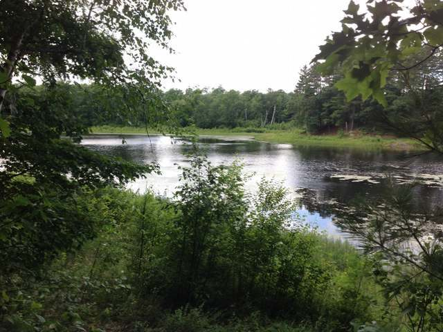 ON Pine Grove Dr #Lot 41, Rhinelander, WI 54501