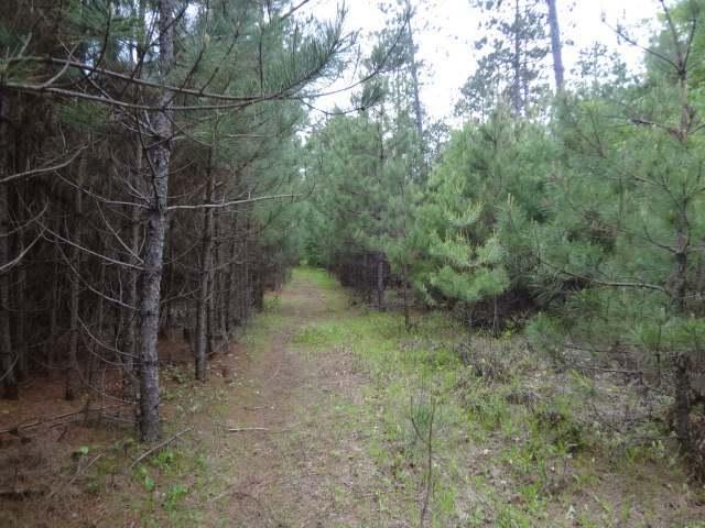 ON Plantation Pines Dr, Minocqua Wi, WI 54548