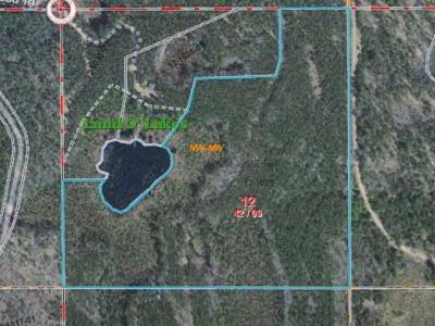 Photo of ON Moccasin Lake Rd, Land O Lakes, WI 54540